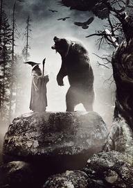wizardpinterestforblog