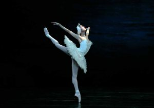 Swan Lake Odette San Francisco Ballet