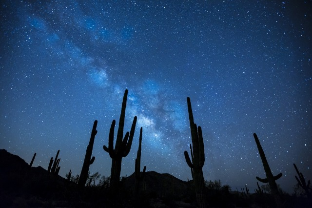 Milky Way Galaxy behind desert cacti by skeeze from https://pixabay.com/en/milky-way-stars-night-sky-923738/