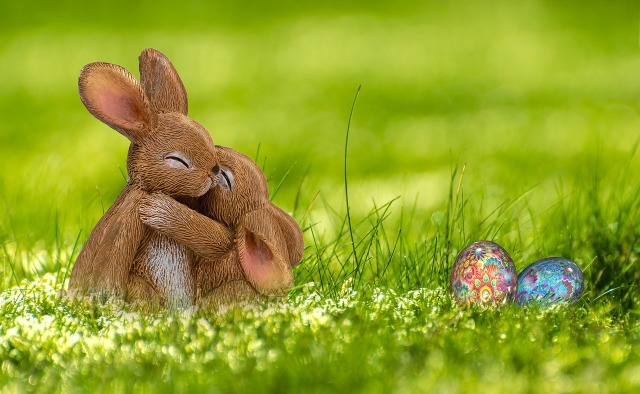 Easter Bunnies hugging in a field of grass near decorated colored eggs by Annca on Pixabay.com – https://pixabay.com/en/easter-easter-bunny-hare-spring-3204589/