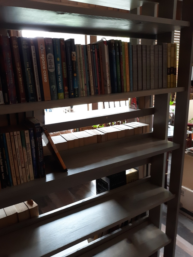 Close view of Debey's personal double-sided bookcase design with some books on the shelves and window light in the background.